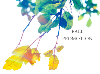 Fall Promotion 2018